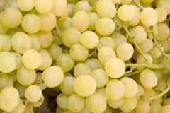 Uvas amarillas frescas Fotos de archivo libres de regalías