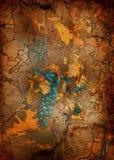 Uvas azuis com Autumn Leaves ilustração stock