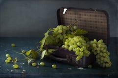 Uvas blancas, botellas de vino y un vidrio de vino Imagen de archivo libre de regalías