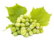 Uvas blancas con las hojas Foto de archivo libre de regalías