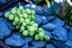 Uvas blancas en un tejado de piedra Foto de archivo