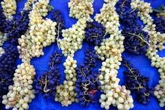 Uvas blancos y negros frescas Imágenes de archivo libres de regalías