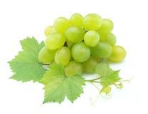 Uvas brancas Fotografia de Stock