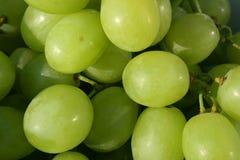 Uvas brancas frescas Foto de Stock Royalty Free