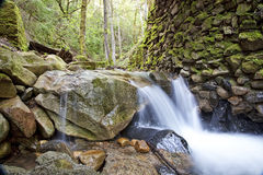 Uvas Canyon Waterfall 1 royalty free stock images