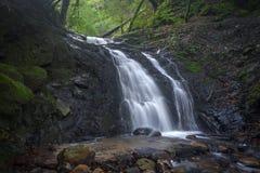 Uvas Canyon Waterfall Royalty Free Stock Photos