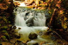 Uvas Canyon Waterfall in Spring Royalty Free Stock Image