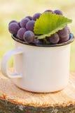 Uvas con la hoja en taza metálica en tocón de madera en jardín el día soleado Fotografía de archivo
