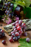 Uvas con las hojas Imagen de archivo libre de regalías