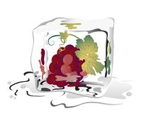 Uvas congeladas Imagens de Stock Royalty Free