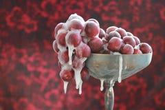 Uvas congeladas Imagenes de archivo