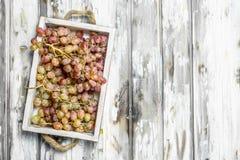 Uvas cor-de-rosa na caixa imagem de stock royalty free