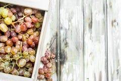 Uvas cor-de-rosa na caixa imagem de stock