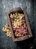 Uvas cor-de-rosa na caixa imagens de stock