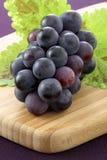 Uvas de concordia frescas Imagenes de archivo