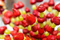 Uvas de la fresa en un palillo Dé fruto en un palillo en una tabla de banquete Imagen de archivo