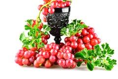 Uvas de las uvas rojas Fotos de archivo libres de regalías