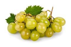 Uvas de Muscat blancas Fotos de archivo