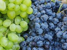 Uvas de vino rojo del mercado Fotografía de archivo