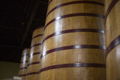 Uvas de vino sabrosas antes de la cosecha Fotos de archivo libres de regalías
