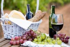 Uvas del vino rojo y cesta maduras de la comida campestre en la tabla en viñedo Imagenes de archivo