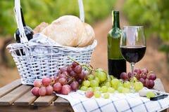 Uvas del vino rojo y cesta maduras de la comida campestre en la tabla en viñedo Fotos de archivo libres de regalías