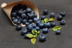 Uvas-do-monte frescas Fotos de Stock Royalty Free