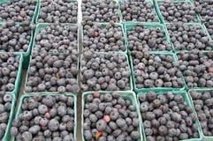 Uvas-do-monte para a venda no mercado do fazendeiro Imagens de Stock