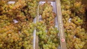 Uvas dulces fotos de archivo