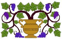 Uvas e folhas desenhando em um vaso Fotos de Stock