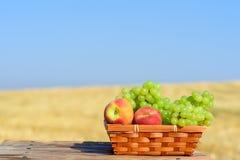 Uvas e pêssegos na cesta exterior no campo de trigo e no fundo do céu azul, dia de verão ensolarado Conceito da colheita do outon imagens de stock royalty free