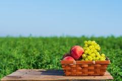 Uvas e p?ssegos dos frutos frescos na cesta fora no fundo do prado verde e do c?u azul no dia de ver?o ensolarado foto de stock royalty free