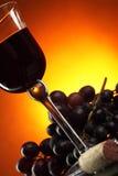 Uvas e vidro do vinho vermelho Foto de Stock Royalty Free