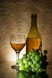 Uvas e vinho branco Imagem de Stock Royalty Free