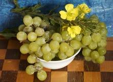 Uvas e wildflowers em um tabuleiro de xadrez Imagem de Stock Royalty Free