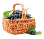 Uvas em uma cesta Foto de Stock