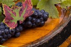 uvas en barril Fotografía de archivo libre de regalías