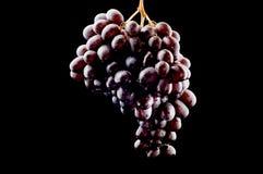 Uvas en cierre del negro para arriba Fotografía de archivo libre de regalías