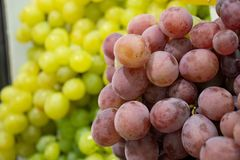 Uvas en de plena pantalla fotografía de archivo libre de regalías