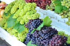 Uvas en el mercado Fotos de archivo