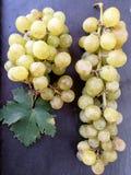Uvas en la bandeja negra Foto de archivo libre de regalías