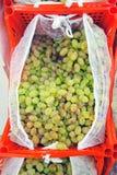 Uvas en las cajas en los estantes Imagen de archivo