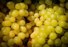 Uvas en un mercado, fondo del vino blanco foto de archivo