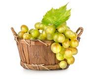 Uvas en una cesta de madera aislada Foto de archivo libre de regalías