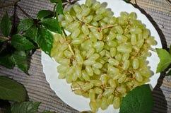 Uvas en una placa blanca. Fotografía de archivo