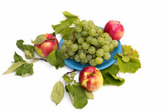 Uvas en una placa y tres manzanas alrededor, aislante Imagen de archivo libre de regalías