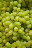 Uvas frescas Imagenes de archivo