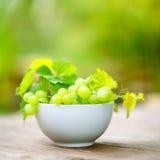 Uvas frescas Foto de archivo libre de regalías