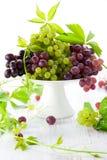 Uvas frescas Fotos de Stock Royalty Free