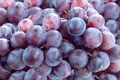 Uvas frescas Fotografia de Stock